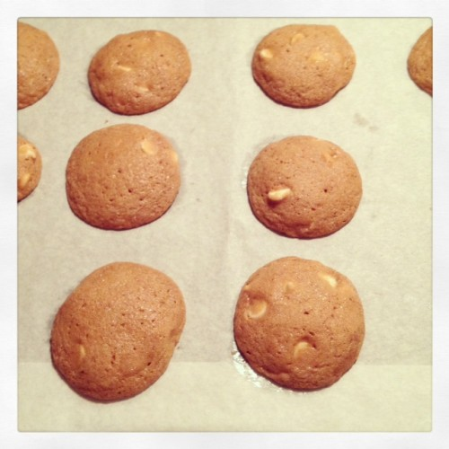 Soft Gingersnaps with White Chocolate Chips | Butter and Sprinkles
